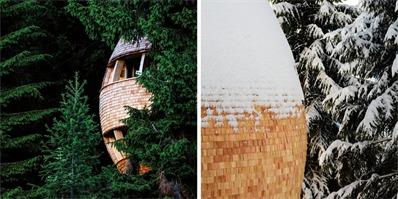 意大利Pigna Architect'树屋:建筑源于森林,归于森林